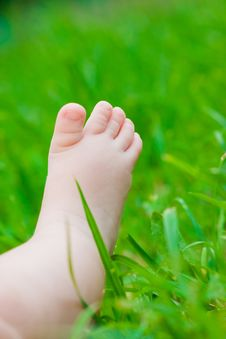 Free Little Baby Feet Royalty Free Stock Photo - 9777585