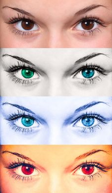 Free Eyebrow, Face, Eyelash, Eye Royalty Free Stock Images - 97782379