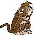 Free Monkey Stock Photography - 9784192