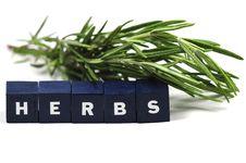 Free Fresh Herbs Royalty Free Stock Photo - 9780845