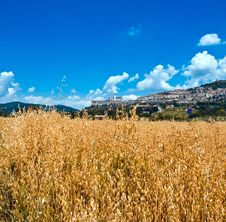 Free Assisi Stock Photography - 9784992