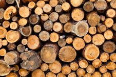 Free Woodstacks Royalty Free Stock Images - 9785349