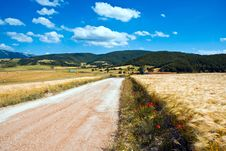 Free Dirt Road In Italy Stock Photo - 9785810