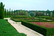 Geometric Garden Royalty Free Stock Image