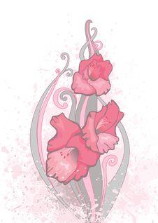 Beauty Flower Royalty Free Stock Photo