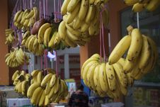 Free DSC_9929 Bananas Wholesale Stock Images - 97837884