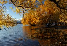 Free Autumn At Lake Tekapo NZ &x28;22&x29; Royalty Free Stock Photo - 97837925