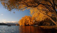 Free Autumn At Lake Tekapo NZ &x28;20&x29; Royalty Free Stock Images - 97837929