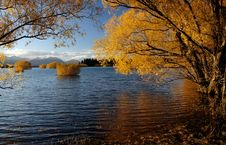 Free Autumn At Lake Tekapo NZ &x28;16&x29; Stock Image - 97837941