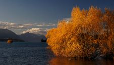 Free Autumn At Lake Tekapo NZ. Royalty Free Stock Photography - 97837997