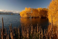 Free Autumn At Lake Tekapo NZ &x28;14&x29; Stock Image - 97838021