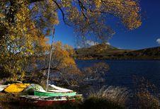Free Golden Season &x28;21&x29; Stock Photography - 97838162