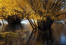 Free Autumn At Lake Tekapo NZ &x28;25&x29; Stock Photo - 97838430