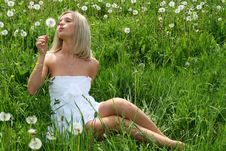 Free Woman With Dandelion Royalty Free Stock Photos - 9793158