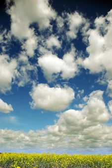 Free Blue Sky Royalty Free Stock Images - 9794339