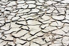 Free Drought Royalty Free Stock Images - 9794559