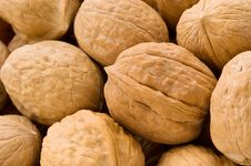 Free Background Of Walnuts Royalty Free Stock Image - 9796026