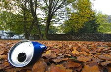 Free Tin Among The Leaves Stock Photo - 9797070