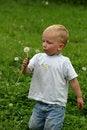 Free Boy And Dandelion Stock Photos - 986843