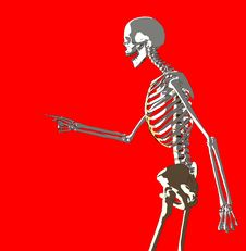 Free Bone 229 Royalty Free Stock Images - 980269