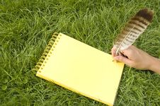 Free Yellow Notebook In Grass Stock Photo - 981620