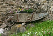 Free Old Wheel Barrow With Flowers Royalty Free Stock Images - 983119