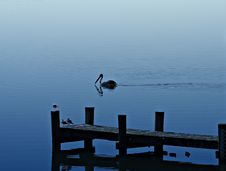 Free Jetty Stock Photos - 983973