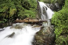 Free Waterfall Stock Photos - 983983
