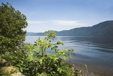 Free Teletskoe Lake Stock Image - 984141