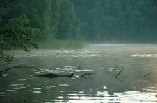 Free Fog On The Lake Stock Image - 984331
