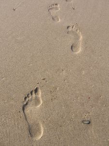 Free Footprints Stock Photos - 984973