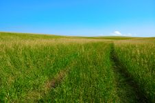 Free Road In Field Royalty Free Stock Images - 985079