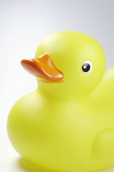 Free Yellow Duck With Red Beak 04 Stock Image - 985881