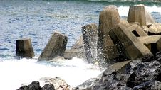 Free Jetty Pilings Royalty Free Stock Photography - 987477