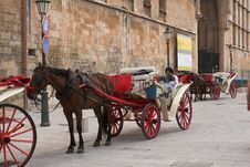 Free Horse & Carriage 4 Royalty Free Stock Image - 988456