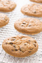 Free Chocolate Chip Cookies Stock Image - 9807721