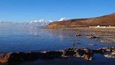 Free Lake And Snow Mountains In Tibet Stock Images - 9800694