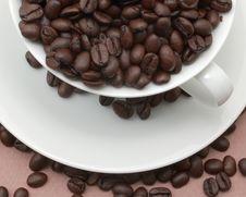 Free Coffee Beans Stock Photo - 9801380