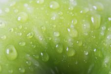 Free Macro Apple Stock Image - 9801671