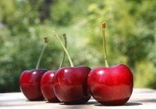 Four Cherries Stock Photos