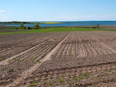 Free Agriculture Plowed Fields Royalty Free Stock Photos - 9802258