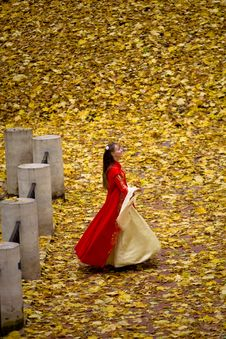 Free Lady In Autumn Forest Stock Photography - 9803912