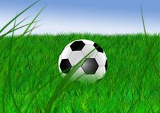 Free Football Stock Photos - 9804043