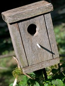 Free Wooden Birdhouse Stock Photo - 9805000