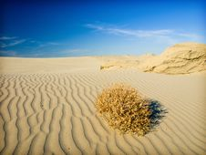 Free Sand Desert Royalty Free Stock Image - 9805066