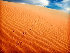 Free Sand Desert Stock Image - 9805161