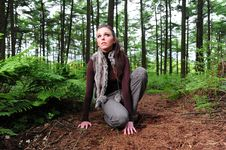 Free Crouching Down In A Forest Royalty Free Stock Images - 9808539