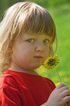 Free Boy With A Dandelion Stock Photo - 9808630