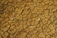 Free Drought Royalty Free Stock Images - 9809609