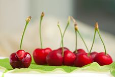 Free Sweet Cherry Stock Photography - 9810362